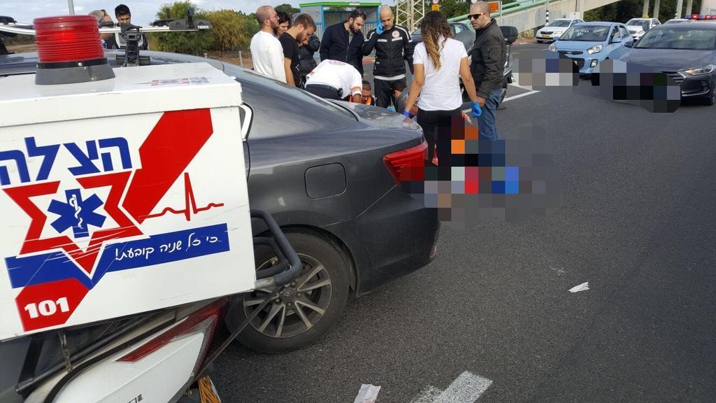 צילום: דוברות ארגון הצלה