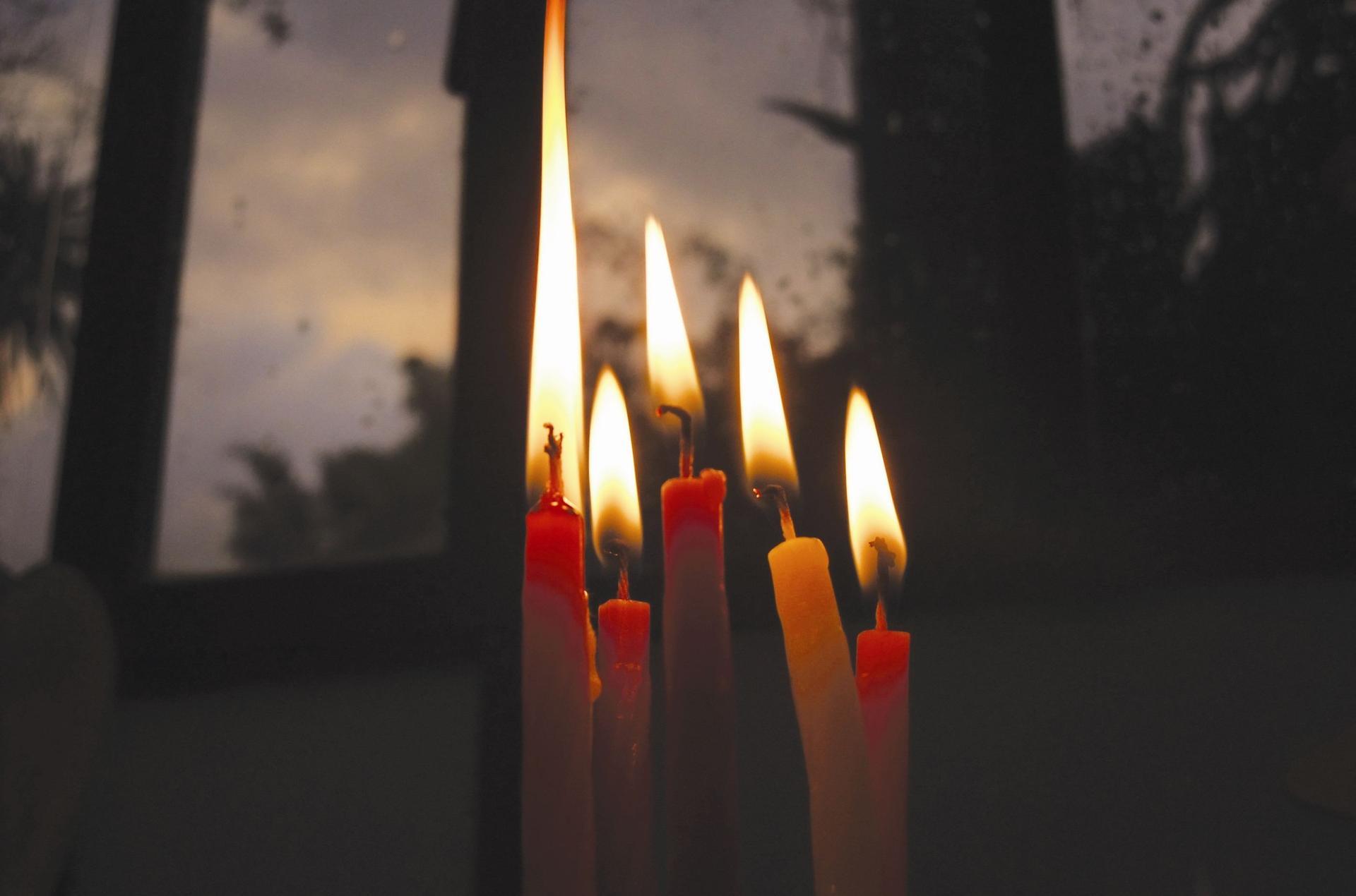 נרות חנוכה. צילום: ליהיא לפיד
